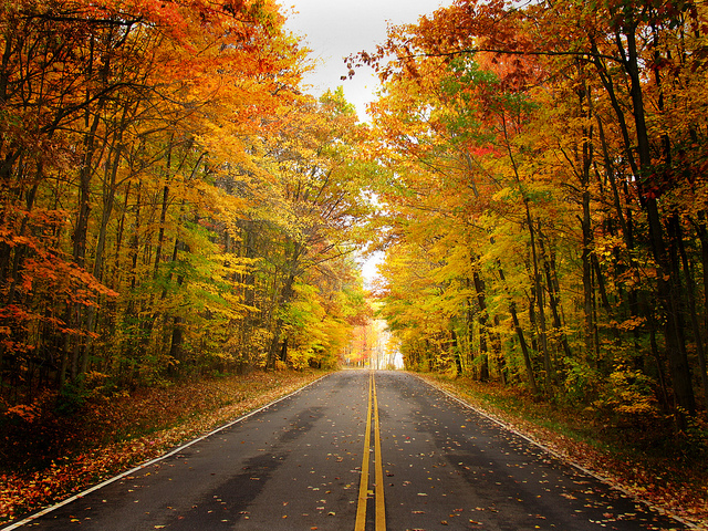 Get your vehicle ready for Autumn driving.